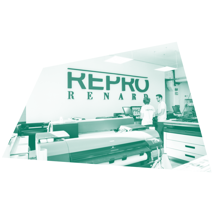 Repro Renard